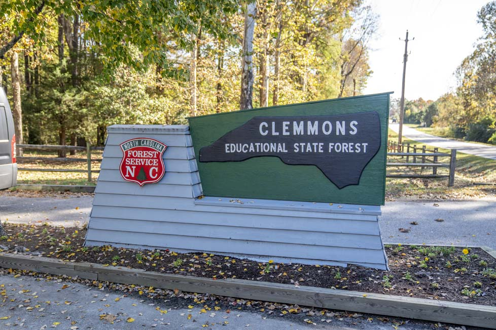 Clayton, NC Clemmons Forest