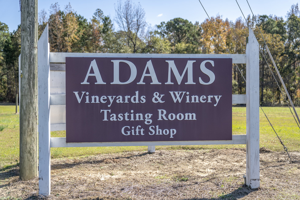 Willow Springs, NC Adams Vineyard