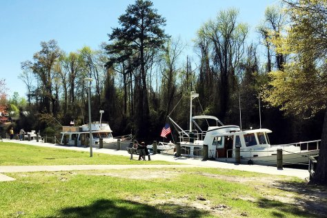 docked boats in dismal swamp canal camden county