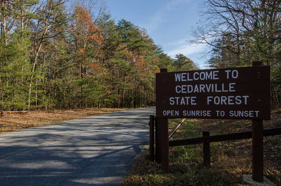 Cedarville State Forest in Waldorf, MD