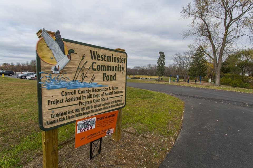 Westminster community pond in Westminster, MD