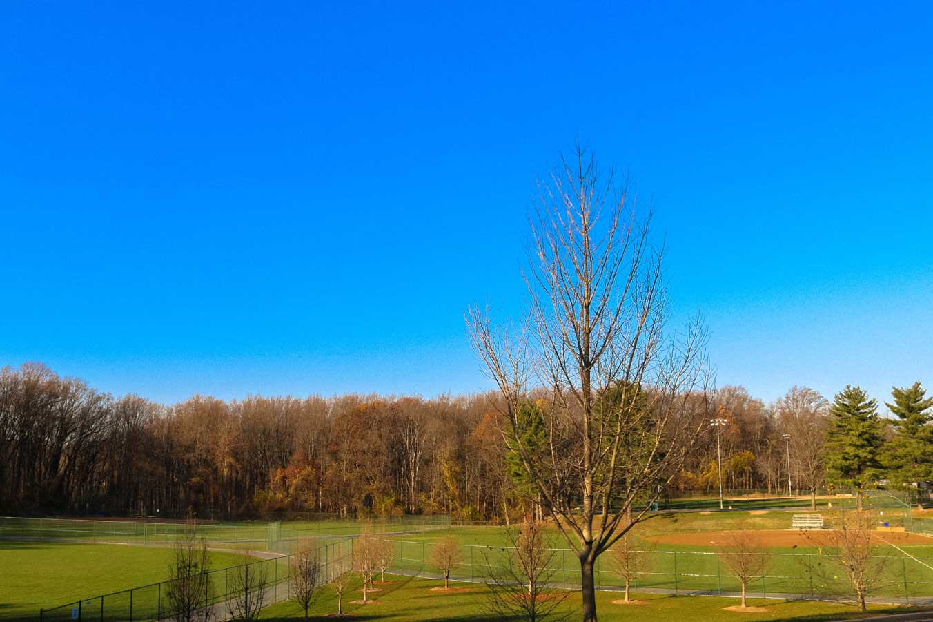 View of sport fields in Wheaton, MD