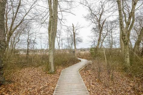 Wooden path in woods in Moorestown, NJ
