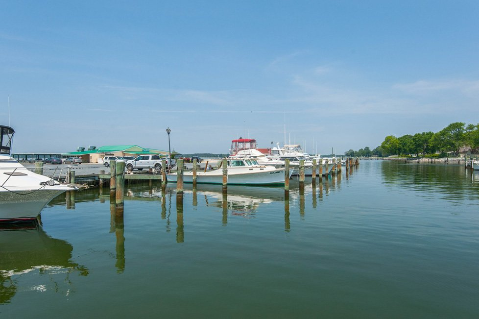 boats docked in marina oxford md