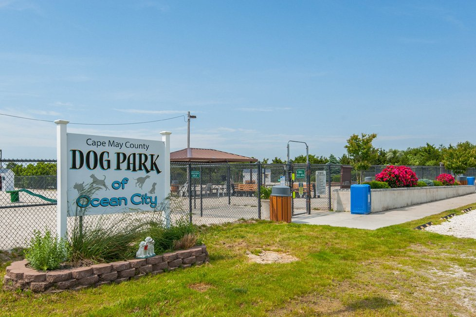 dog park ocean city nj