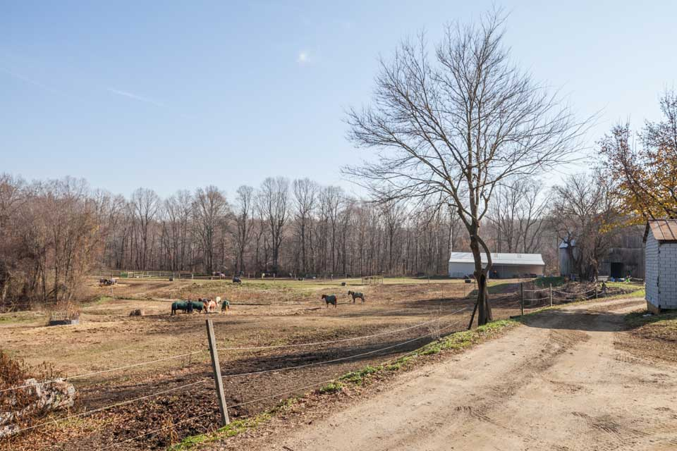 Horse farm in Crofton, MD