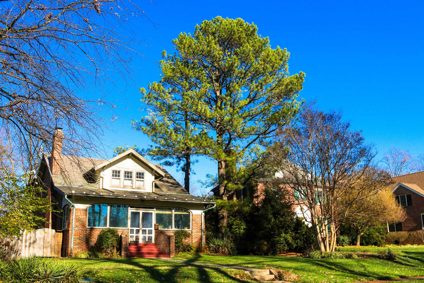 Single family home with tree in Rockville, MD