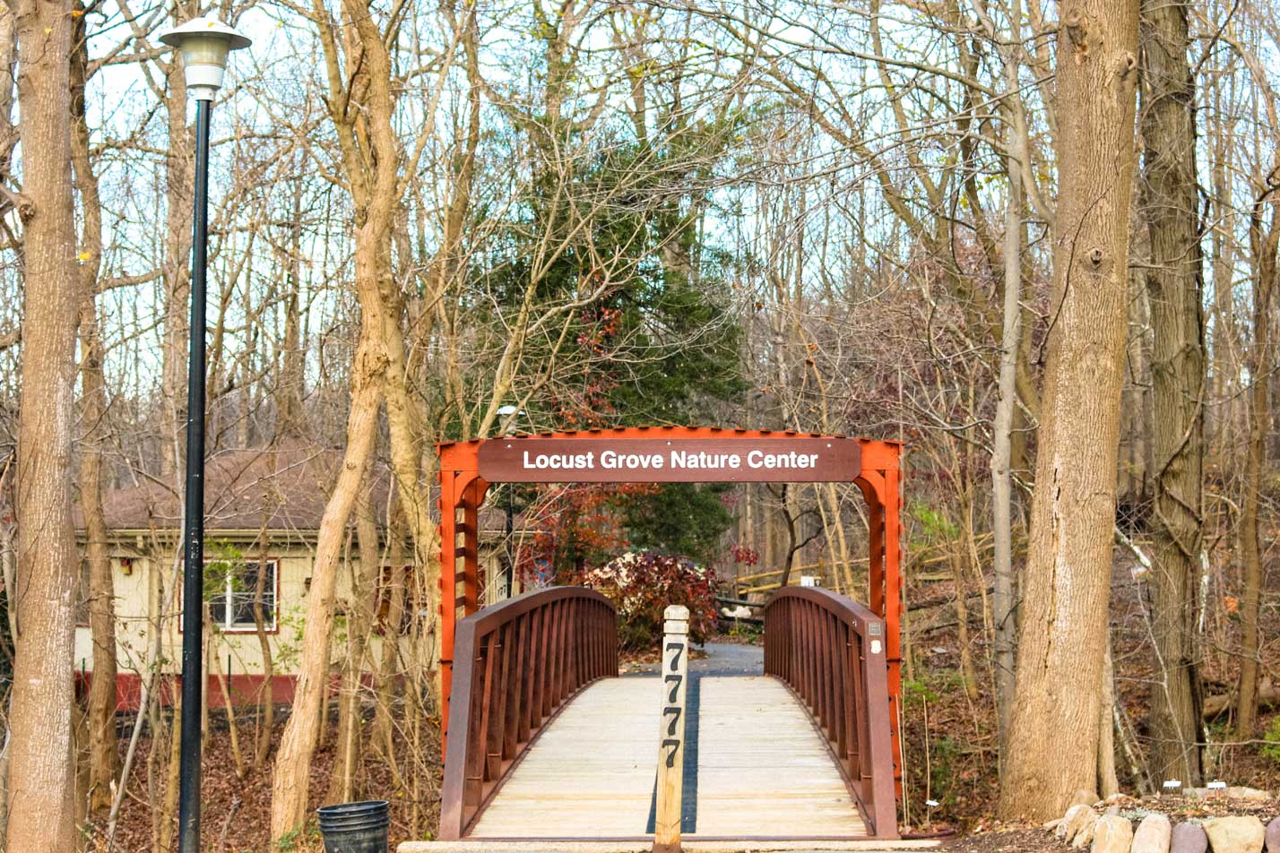 Locust Grove Nature Center in Potomac, MD