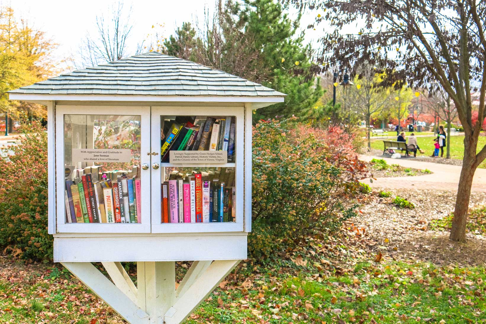 Little free library in Vienna, VA