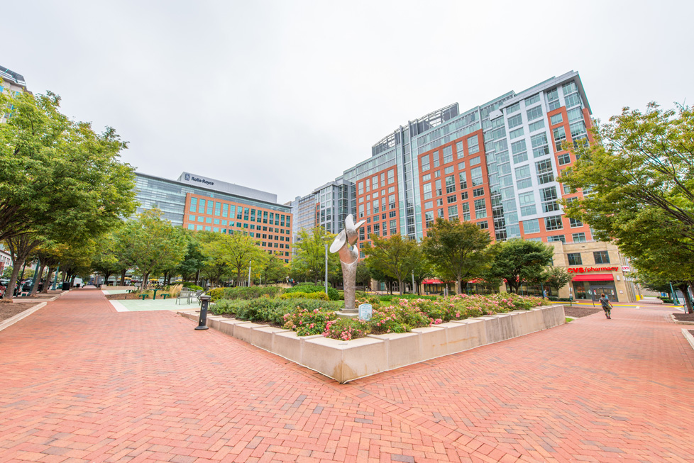Reston Town Center Square