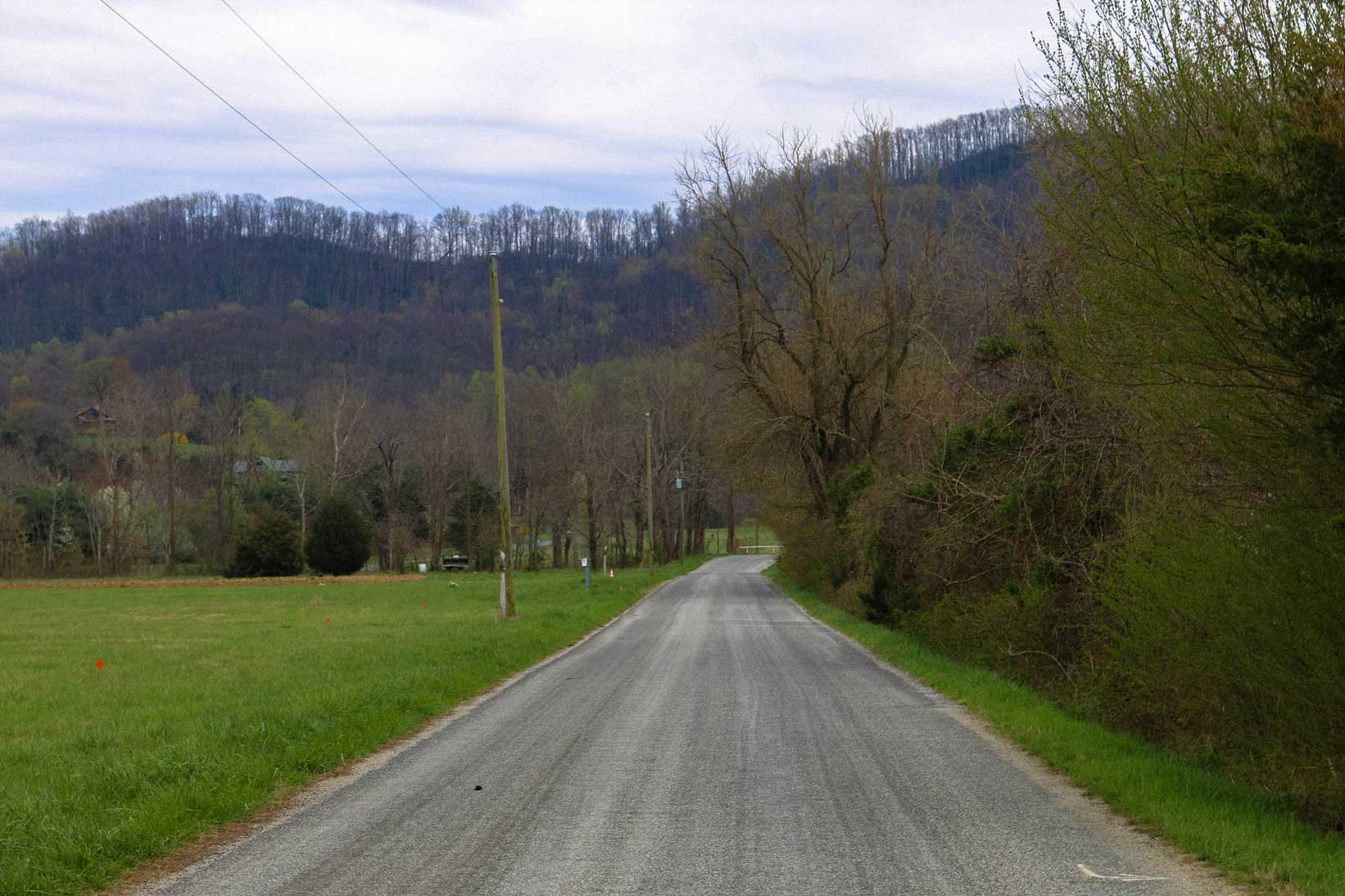 rural road in wintergreen va