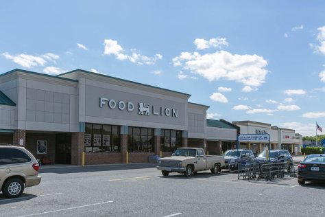 food lion great neck va