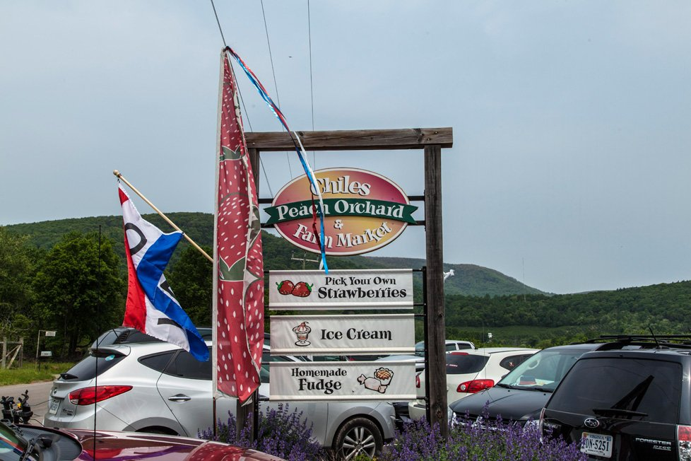 chiles orchard in crozet va