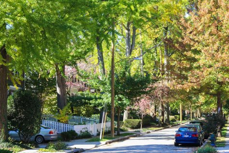 Residential streets in Chevy Chase, Washington, DC